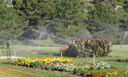 Horticulture night coming to Hays