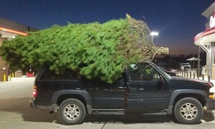 Gardner family goes all in for extra large 18 foot Christmas Tree